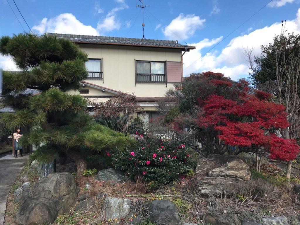 家のリフォームに伴い、庭にある庭木や庭石を全部撤去です