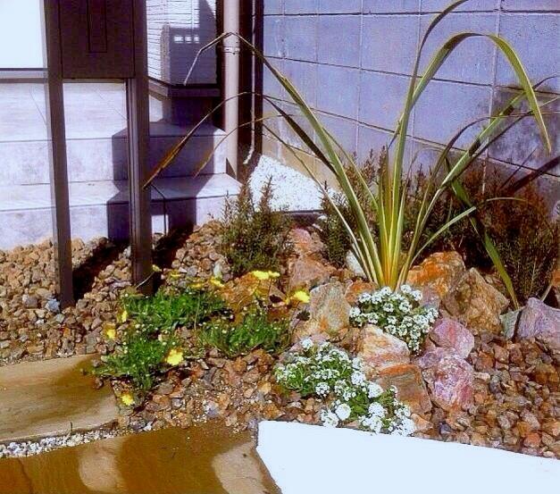 草花と石の組み合わせで、より自然っぽい雰囲気が出ます