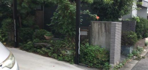 門扉から玄関までのアプローチ沿いの庭木や庭石の撤去です