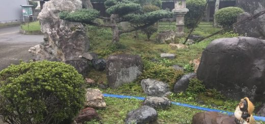 お庭の解体のお見積もり。50年以上前のお庭ですね。