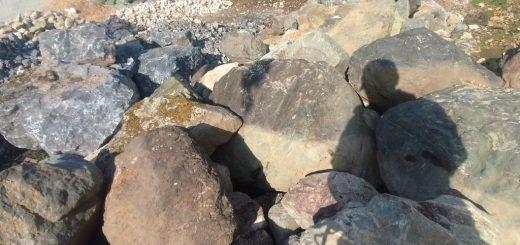 揖斐石の山の中から、条件に合う石を持っていきます