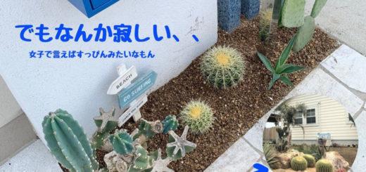 diyで小さな庭つくり
