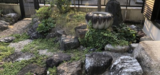 手水鉢前の飛石